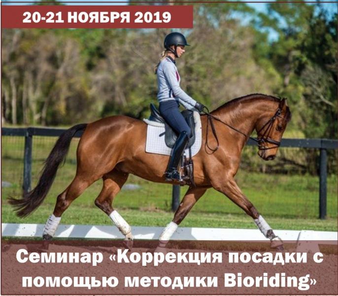 20-21 ноября в Санкт-Петербурге состоится семинар «Коррекция посадки с помощью методики Bioriding»!