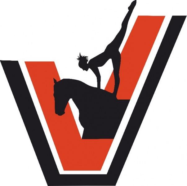 29-30 августа 2020 года на базе КСК «Вента-Арена» состоялся Чемпионат Санкт-Петербурга по вольтижировке