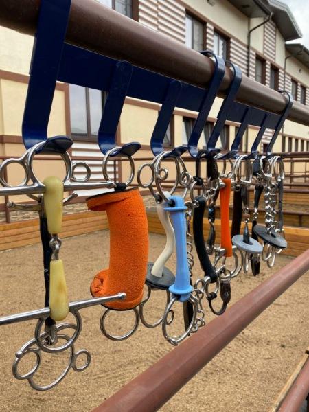 28-29 ноября в Victory Horse Club состоится семинар «Всё о железе»