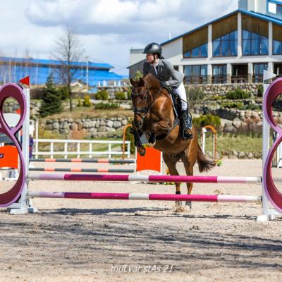 Чемпионат среди любителей и Первенство среди всадников на лошадях до 150 см в холке прошли в минувшие выходные, фото 5