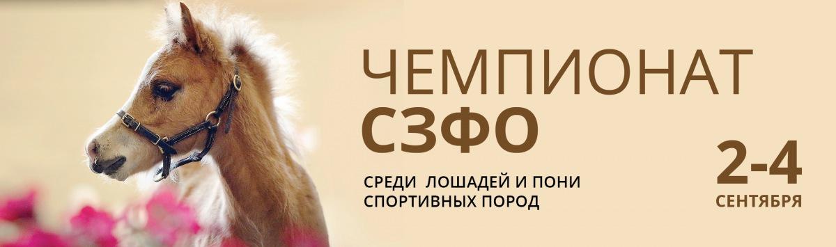 Чемпионат СЗФО среди лошадей и пони спортивных пород