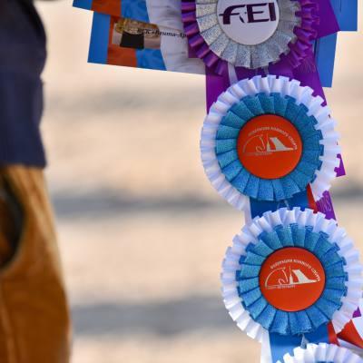 Дети, лошади, конкур: Петербург принял международные соревнования для юных спортсменов, фото 12