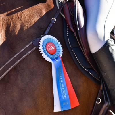 Дети, лошади, конкур: Петербург принял международные соревнования для юных спортсменов, фото 4