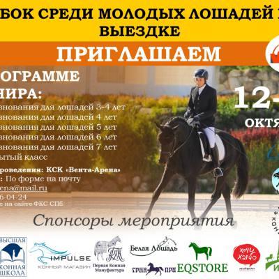 Приглашаем на Испытания племенных лошадей и Кубок среди молодых лошадей по выездке 13 ОКТЯБРЯ 2019 в конноспортивный комплекс