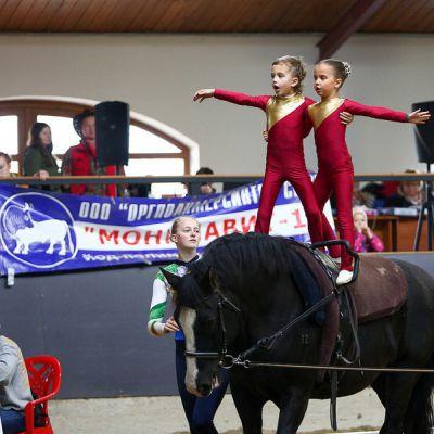 Прошел пятый юбилейный Чемпионат и Первенство Санкт-Петербурга по вольтижировке, фото 3