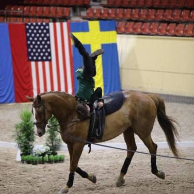 В Швеции прошли международные соревнования по вольтижировке, фото 5