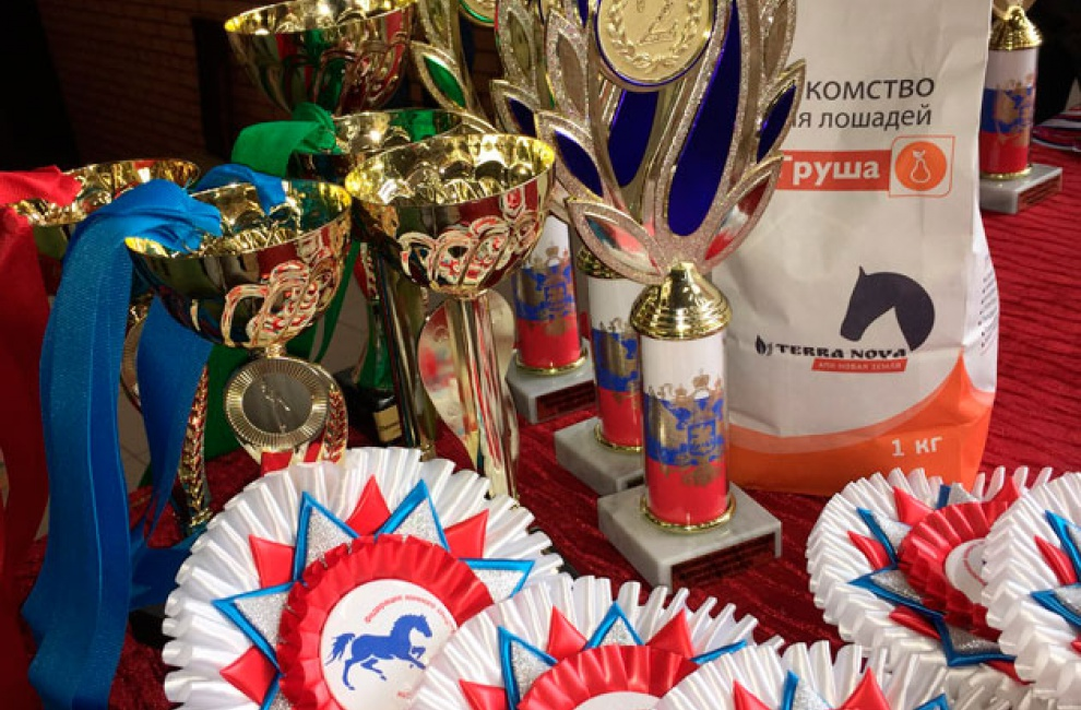 Всероссийский турнир по выездке прошел в Ленинградской области