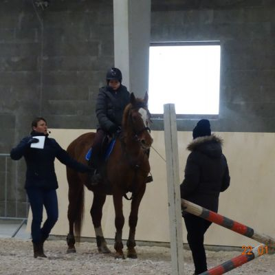 Закончилось обучение по программе «Подготовка лошадей и всадников по конкуру», фото 6