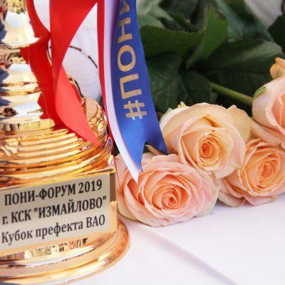 Завершился Второй Всероссийский пони-форум, фото 4