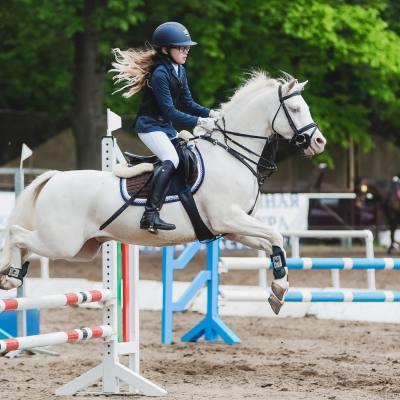 Завершился Второй Всероссийский пони-форум, фото 7